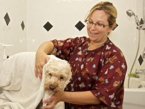 South Shore Veterinary Clinic Groomer